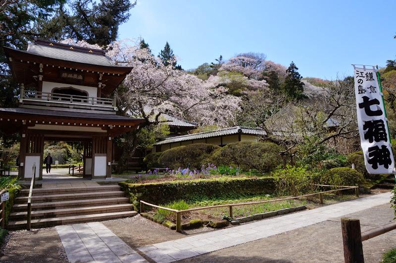 2014 Japan - Dag 7 - britt-DSC03557-0043.JPG