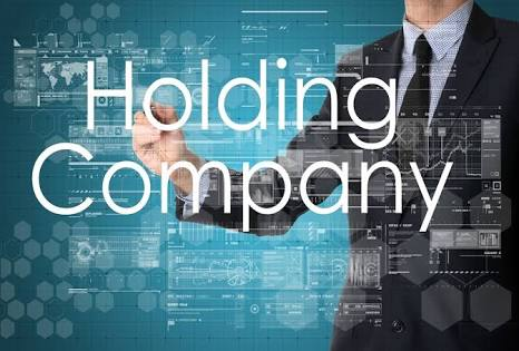 Holding Company Meaning Purpose Advantages And Disadvantages