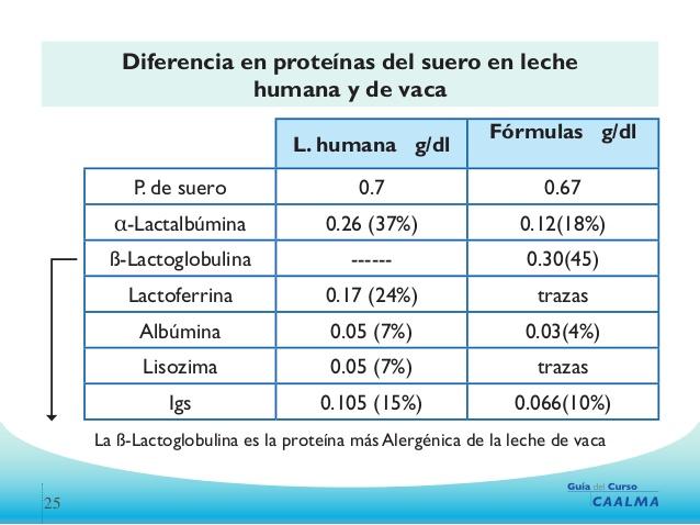 caracteristicas inmunologicas de la leche materna