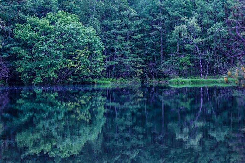 Mishaka Pond photo9