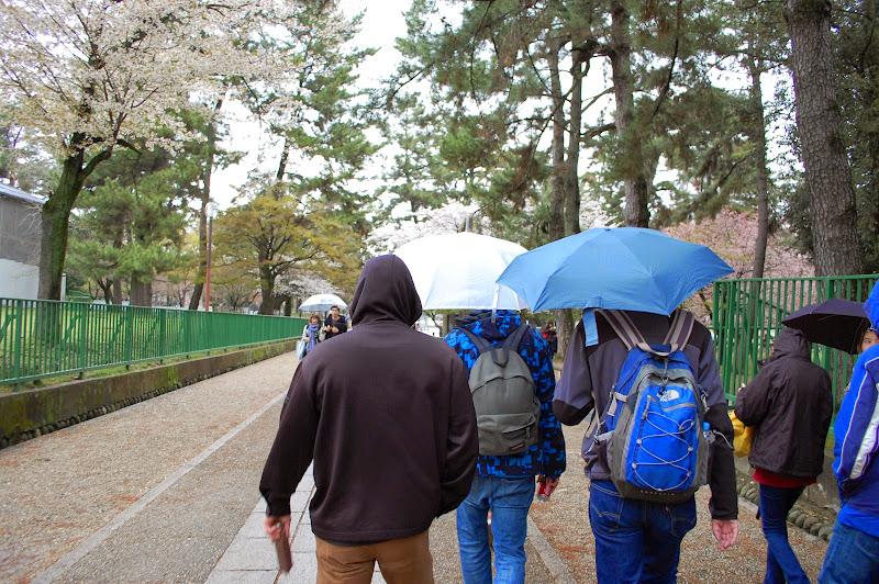 2014 Japan - Dag 8 - jordi-DSC_0431.JPG