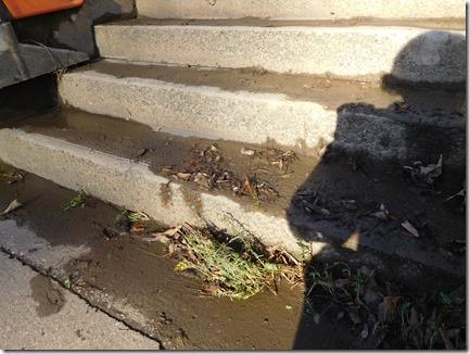 22 steps were flodded