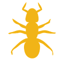 Ant Smasher and Popper icon
