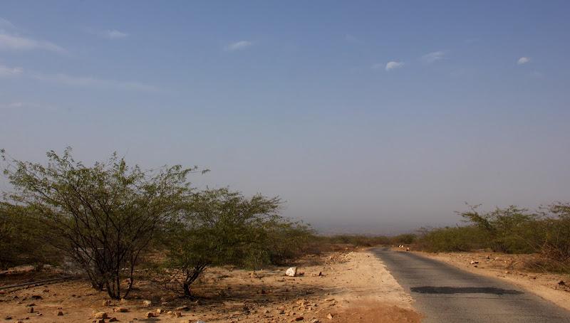 #Gujarat #India #Kutch #Travelblog