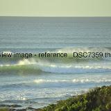 _DSC7359.thumb.jpg
