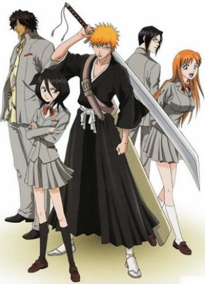 bleach 309 vostfr