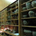 Археологический музей ВГУ 001.jpg
