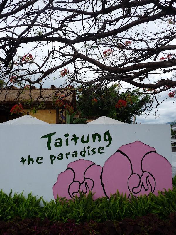 TAIWAN.Taitung - P1110545.JPG