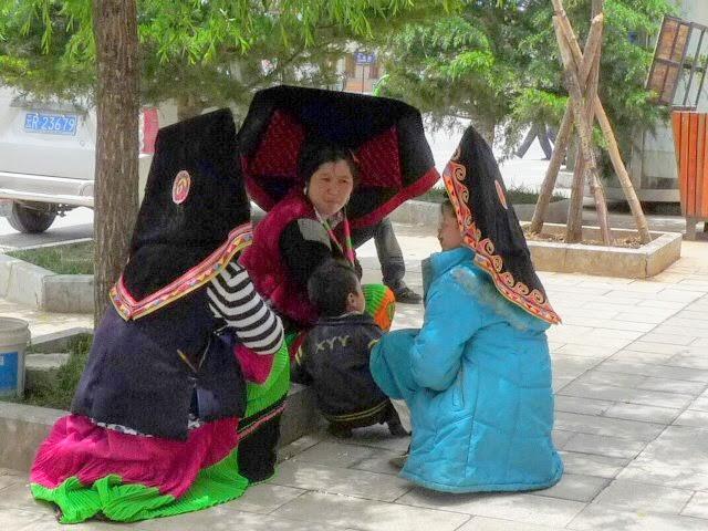 Chine.Yunnan Wen shan et BA MEI 1 - P1260745.JPG