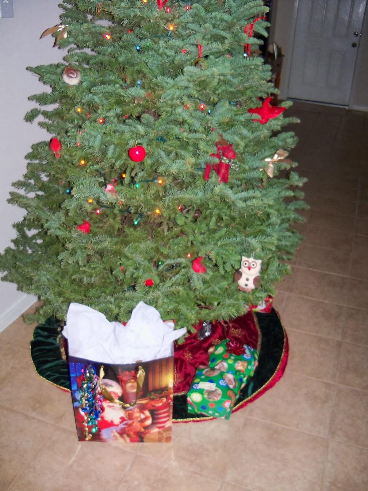 Christmas 2013 - 115_9714.JPG