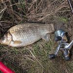 20150426_Fishing_Prylbychi_013.jpg