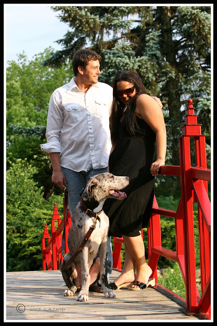 The Dynamite Danes Family! - lennox.jpg