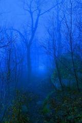 Beautiful_Scenery-06