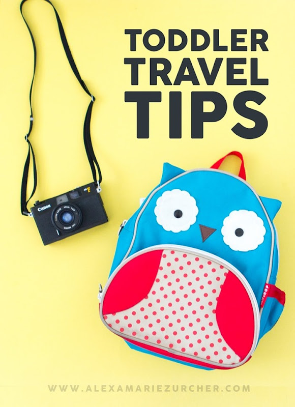 Toddler Travel Tips
