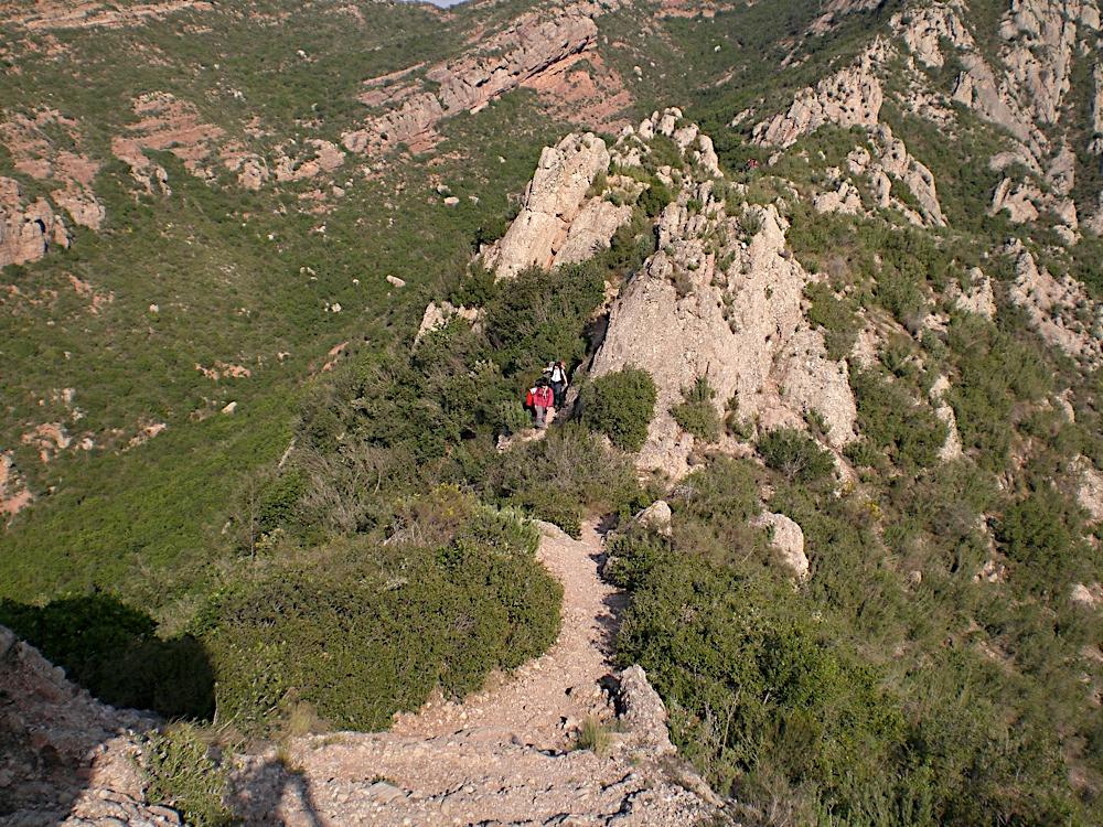 Sortida Sant Salvador de les espasses 2006 - CIMG8251.JPG