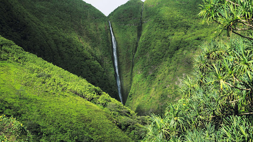 1200 Foot Papalaua Falls, Island of Molokai, Hawaii.jpg