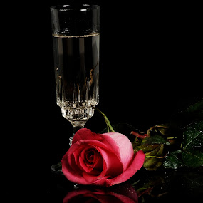by Cristobal Garciaferro Rubio - Artistic Objects Cups, Plates & Utensils ( cup, rose, reflection, champagne )