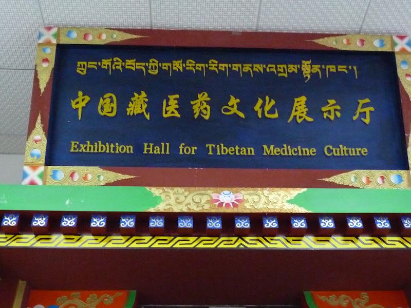 Chine.Yunnan. Shangri la et environs - P1250933.JPG