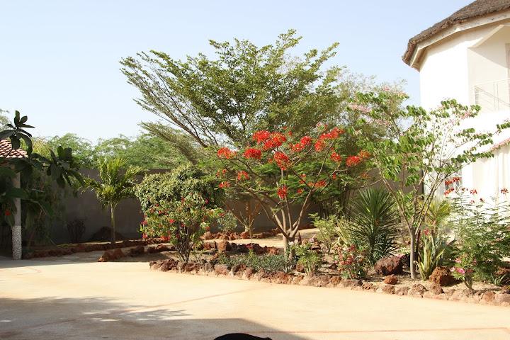 on s'eclate au .... Senegal IMG_1038