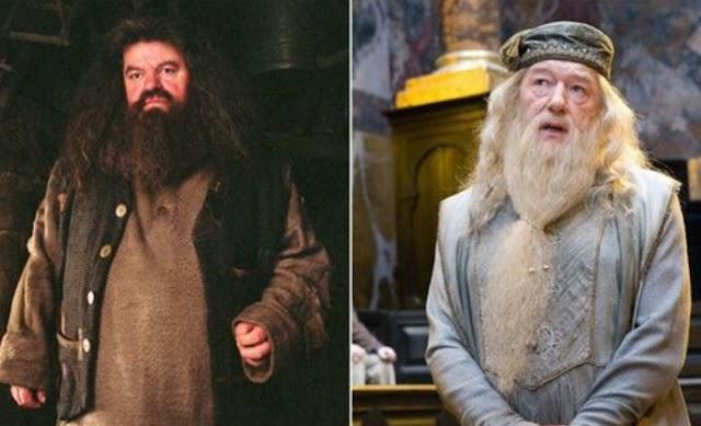 Harry Potter: Detalhes importantes que você não sabia sobre a amizade de Dumbledore e Hagrid
