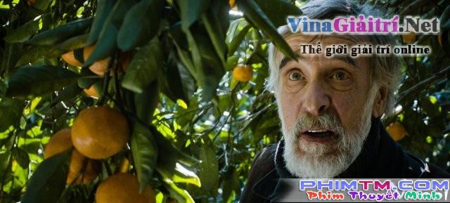 Xem Phim Mùa Quýt - Mandariinid - phimtm.com - Ảnh 3