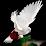 Abo Ahmad's profile photo