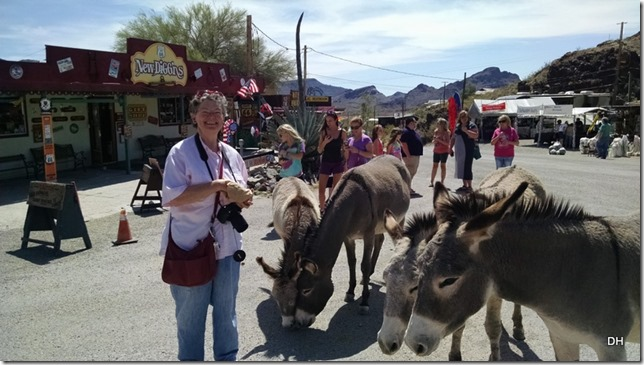 03-25-16 RT Emerald Cove Oatman EC (171)