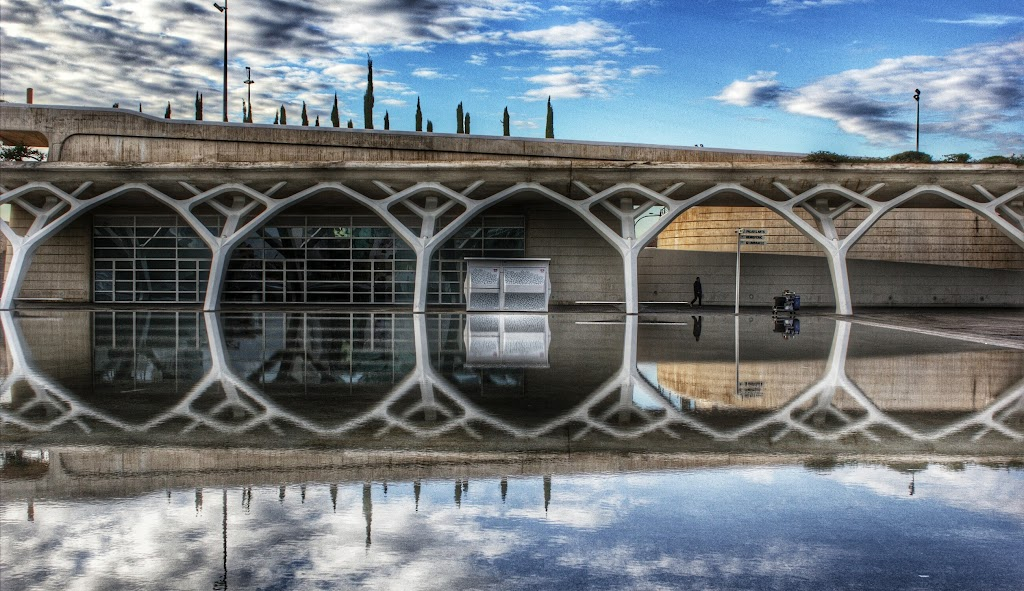Valencia, City Of Arts And Sciences - 29