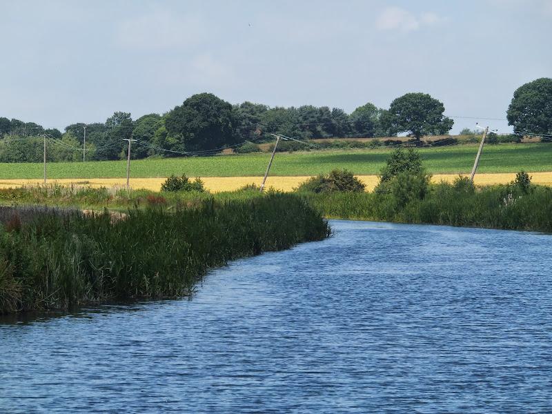 wonky telegraph poles near Ebridge Mill pond