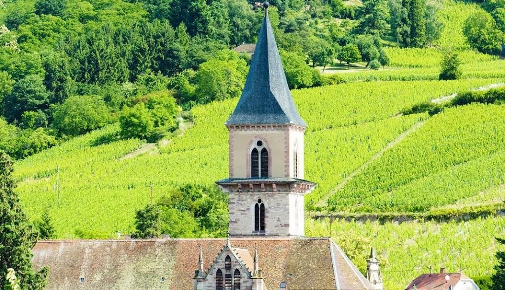 France Alsace Villages Vosges Vineyards Wayfarers Walking