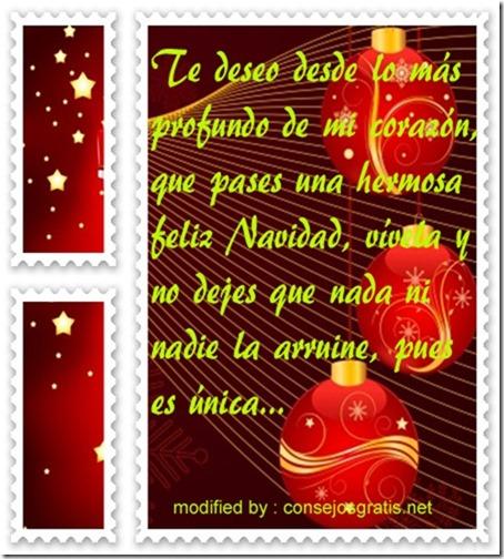 navidad (67)