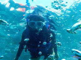 pulau harapan, 23-24 mei 2015 olympus 06