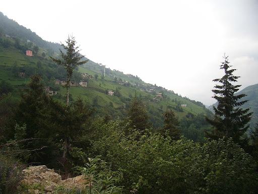 bayirkoy01
