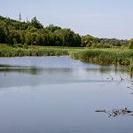 20140524_Fishing_Bronnyky_021.jpg