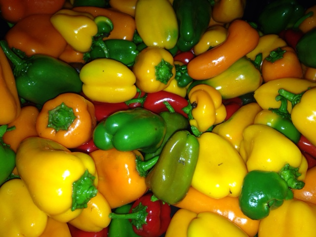 Garden of Eat\'n: Mini bell peppers this week!! They maybe small but ...