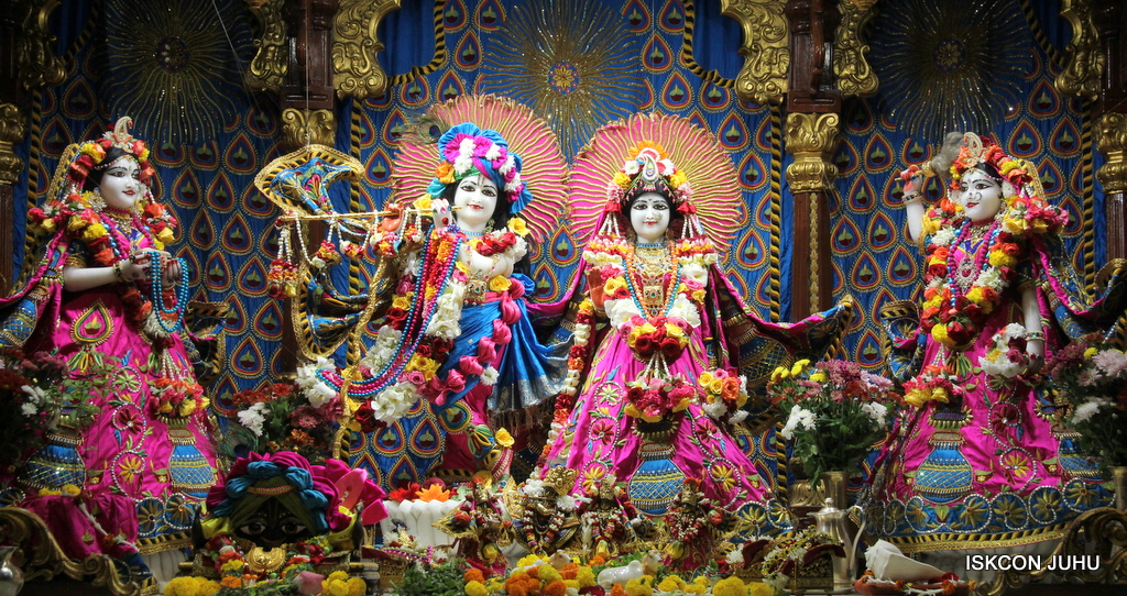 ISKCON Juhu Sringar Deity Darshan on 2nd Oct 2016 (1)