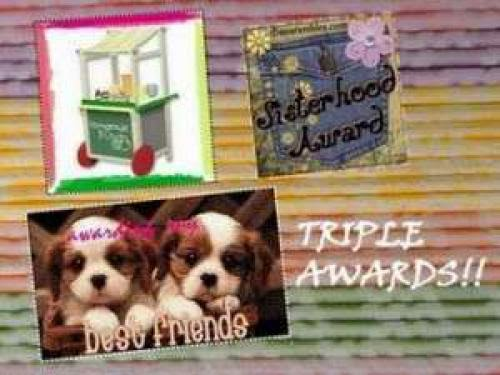 Triple Blog Award