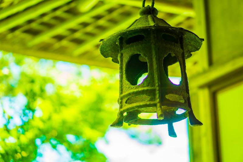 臥龍山荘 庭園 6