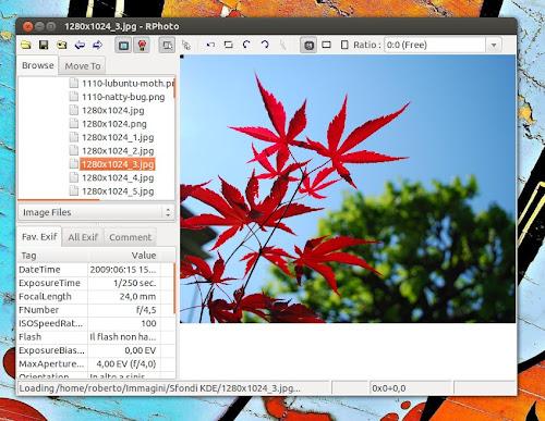 RPhoto su Ubuntu 12.04