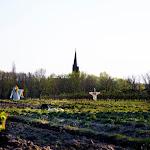2015.04.23.,Klasztor wiosną,fot.H.L (41).jpg