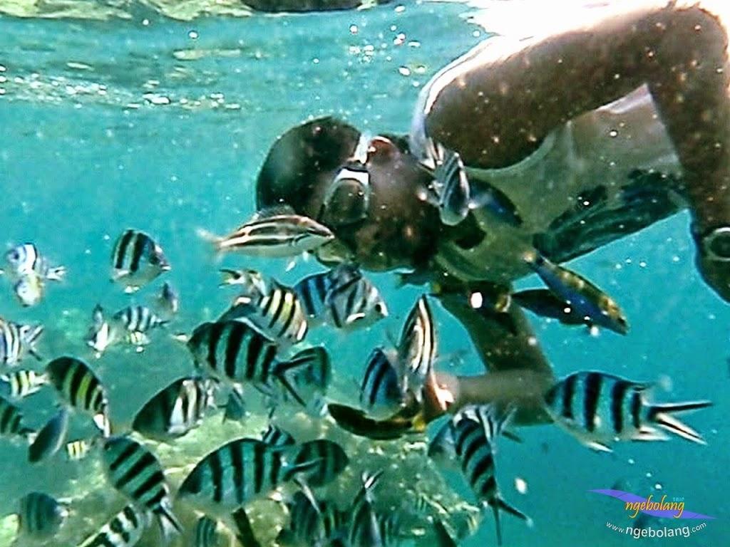 explore-pulau-pramuka-olp-15-16-06-2013-15