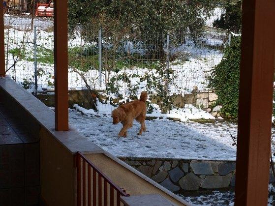 Görögország-Evia sziget-Limni-hóesés