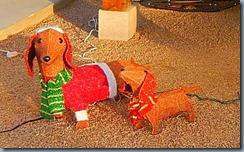 dashhound