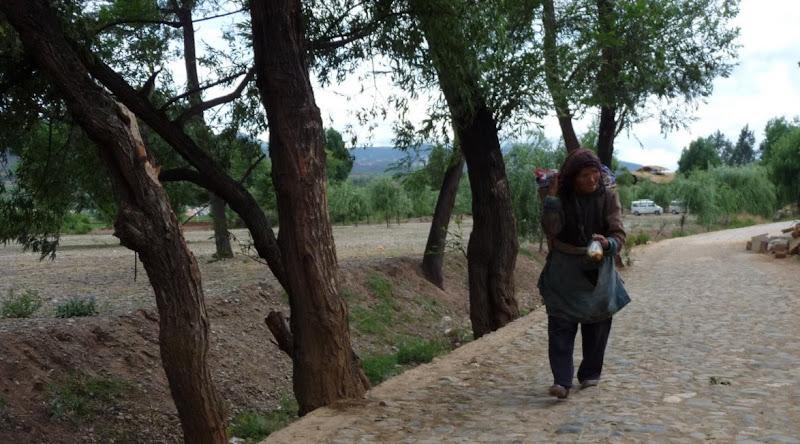 Chine . Yunnan.SHA XI 2 et retour à Lijiang - P1250102.JPG