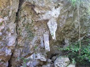聖水が滴り落ちるという鍾乳石の柱