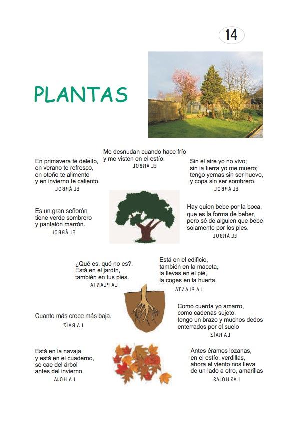 4aefae6152 Los duendes y hadas de Ludi: Adivinanzas de plantas
