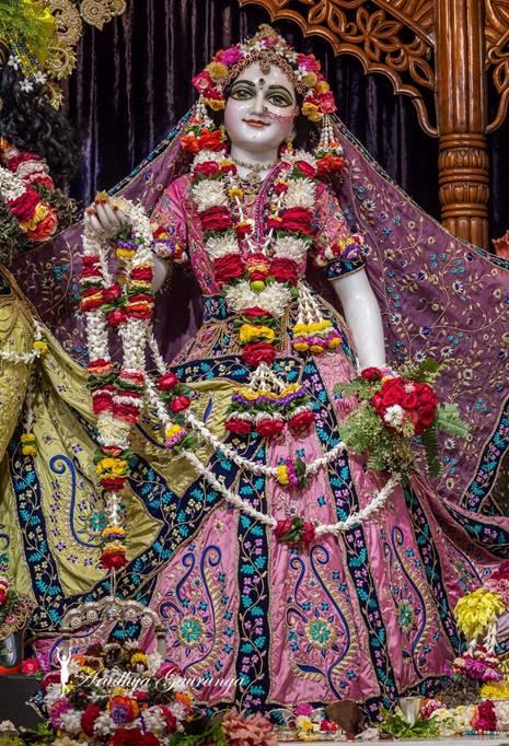 ISKCON Mayapur Deity Darshan 01 Mar 2016 (26)