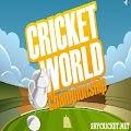 Play Cricket World Championship Game