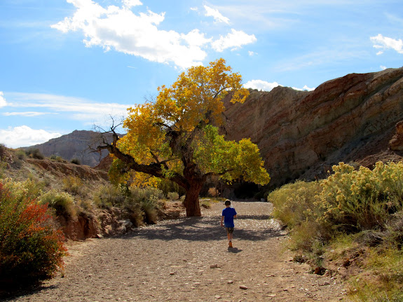 Leaving Little Wild Horse Canyon