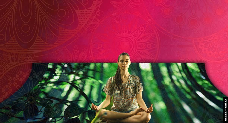 hipocampo mindfulness